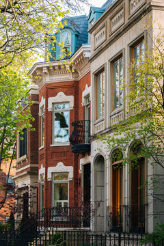 Houses in Lincoln Park, Chicago, Illinois