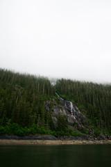 Fog covering trees on mountainside