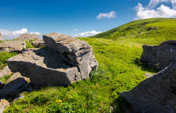 grassy hill side with boulders. beautiful summer scenery in mountains