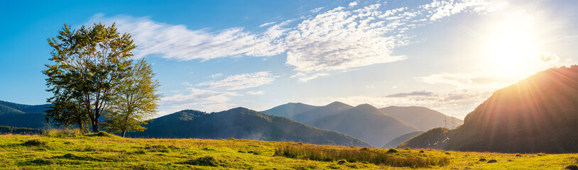 panorama of a mountainous landscape. trees on the grassy meadow. powerline tower in the distance. beautiful autumn sunset