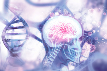 Human brain x-ray view on scientific background