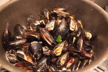 Mussels in shells in Italian cuisine
