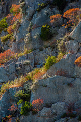 Rocky Hills #2