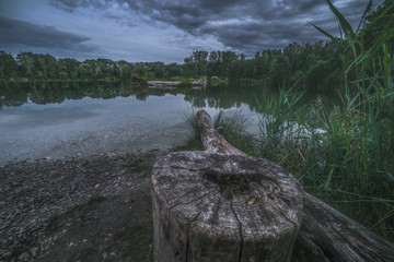 Night Landscape with the Tree Stump by the Lake