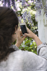 Girl is photographing on mobile phone blossoming lilac