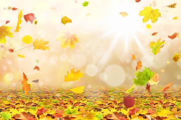 Herbst 172