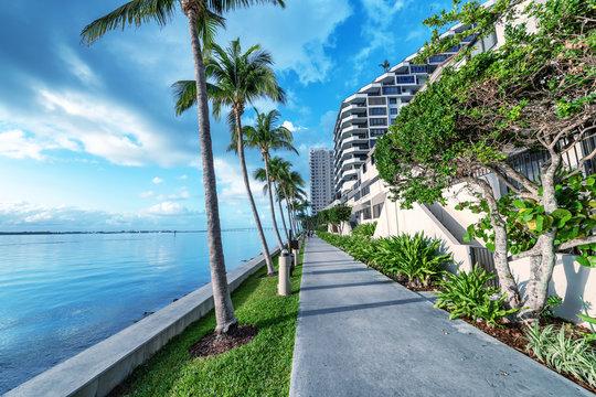 Brickell Key oceanfront at dawn, Miami