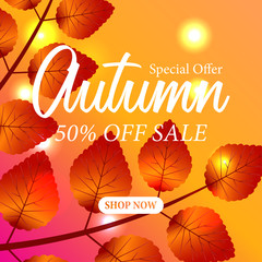 autumn leaves fall template. sale offer template. vector illustration