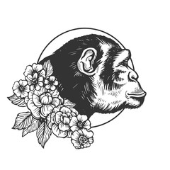 Monkey head animal engraving vector