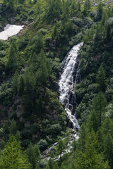 Alpine waterfall into the wild nature, between pines, rock and mountains