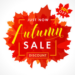 Bright banner for autumn sale with text 50% off just now in frame from red maple leaves. Fall sale background, special offer for promotion poster or flyer design. Vector illustration