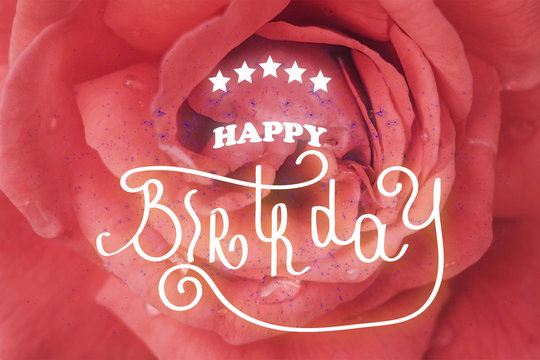 Happy birthday hand lettering. One rose flower up close