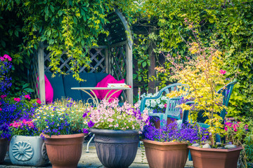 Beautiful, Summer garden with amazing blossom in big flowerpots