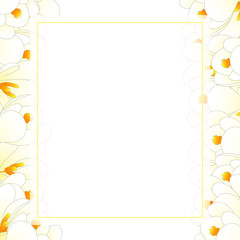 White Crocus Flower Banner Card Border