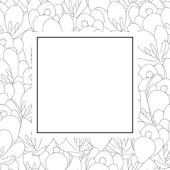 Crocus Flower Outline Banner Card
