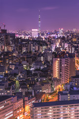 Aerial night view of the district of Korakuen in Tokyo with the skytree tower in background.