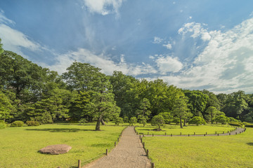 Big pine trees on a lawn under the blue sky full of clouds and zen style flat stone in the garden of Rikugien in Tokyo in Japan.