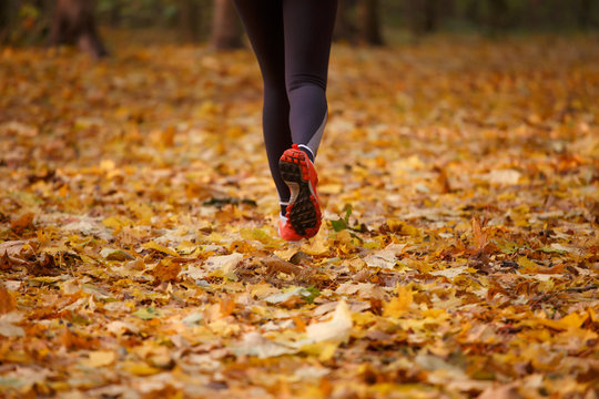 Photo of human in sports clothes and red sneakers running along yellow foliage of autumn forest