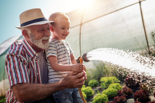Grandfather with his grandson working in the garden