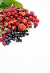 Strawberry, currant, gooseberry, cherry, raspberry on white background with leaves