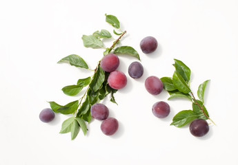 Fresh plum with leaves on white background