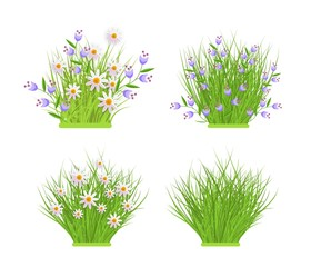 Spring and summer floral bundles of different widths set with fresh white chamomiles and blue wild flowers on green grass. Beautiful seasonal blooms on greenery in isolated vector illustration.