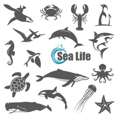 collection of black sea animals isolated on white background