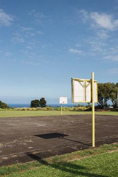 Tropical basketball court