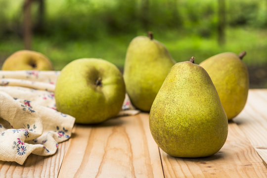 Organic  pears on a rustic wooden table