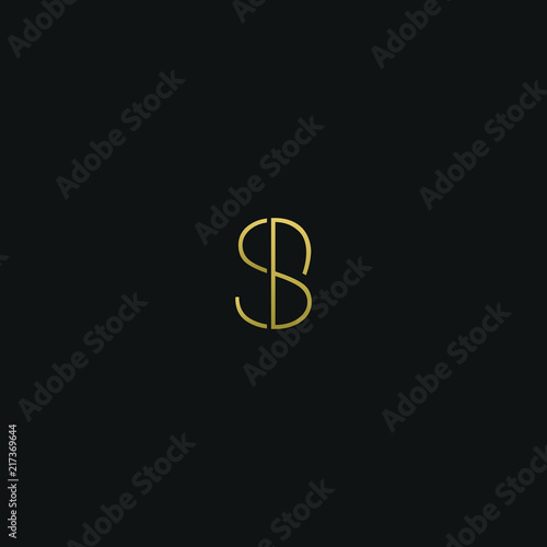 Modern creative elegant SB or BS black and gold color initial based