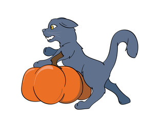 Black Cat Leaning on a pumpkin hissing