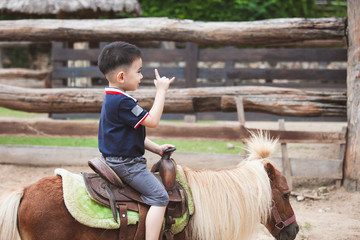 Cute asian child boy riding a pony in the farm with fun