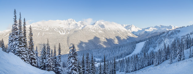 Snowy mountain trees with a view overlooking Blackcomb Mountain. Fototapete