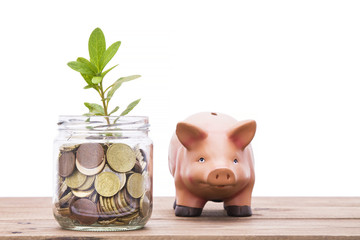 jar of coins, seedling and piglet. savings and finance concept