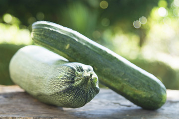 courgette with green background