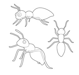 Insect Set Cute Ant Cartoon Vector Coloring Book