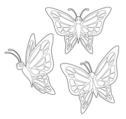 Insect Set Cute Butterfly Cartoon Vector Coloring Book