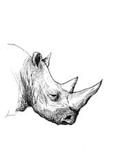 Ink Drawing Rhino