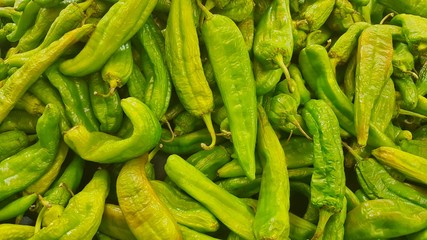A batch of green Hatch Chili peppers for sale. There are many varieties of Hatch peppers, with heat ranging from Jalapeno  to Habanero levels. They are grown in New Mexico in the Hatch Valley region. Wall mural