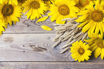 Background with yellow sunflowers and wheat ears on a old wooden boards.