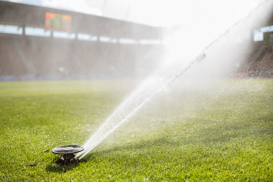 Watering the pitch before the match.