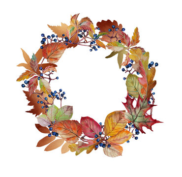 Watercolor autumn wreath with autumn leaves and grapes. Stock Illustration on white background