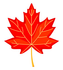 Colorful cartoon red maple leaf