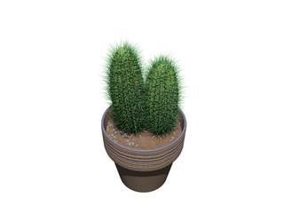 Grüner Kaktus im Blumentopf