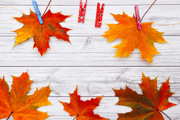 autumn leaves on wooden background with blank place for text - top view