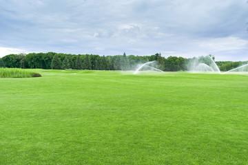 Golf course, park