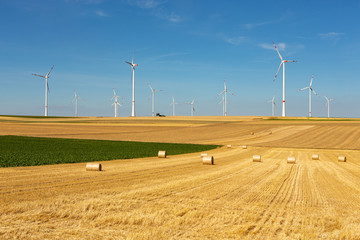 Windturbines in a yellow and green farmland landscape