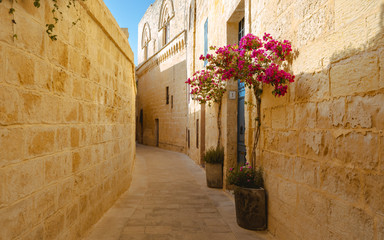 Montage in der Fensternische Schmale Gasse Malta Mdina closeup of a typical narrow alley with beautiful little tree