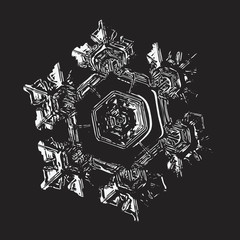 Glossy snowflake on black background. This vector illustration based on macro photo of real snow crystal: small star plate with six short, broad arms, relief surface and complex inner structure.
