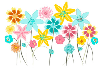 Wall art, nursery or children's room decor. Flower placement print for kids apparel. Wildflower vector illustration.
